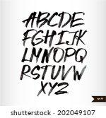 handwritten calligraphic black... | Shutterstock .eps vector #202049107