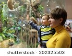 family looking at wild animals... | Shutterstock . vector #202325503