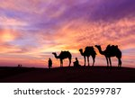 Desert Man With Camel And Grea...