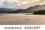 tropical mountain range this... | Shutterstock . vector #202812097
