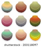 Colored Cockleshell Collection...