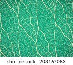 seamless pattern. nature theme. | Shutterstock .eps vector #203162083