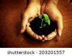 new life | Shutterstock . vector #203201557