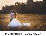 wedding. beautiful couple... | Shutterstock . vector #203273227