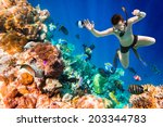 snorkeler diving along the... | Shutterstock . vector #203344783