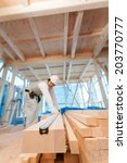 carpenter of housing... | Shutterstock . vector #203770777