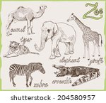 set of vector sketches of... | Shutterstock .eps vector #204580957