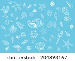 50 different kinds of seashells ...