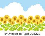 sunflowers   Shutterstock .eps vector #205028227