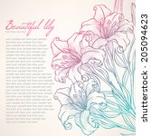 beautiful card with beautiful... | Shutterstock .eps vector #205094623