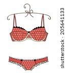 lingerie  | Shutterstock . vector #205641133