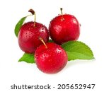three red wild plums with drops | Shutterstock . vector #205652947