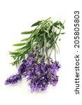 lavender | Shutterstock . vector #205805803