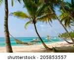 romantic cozy hammock in the... | Shutterstock . vector #205853557