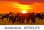 African Sunset With Blue...