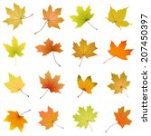 set of falling autumn maple... | Shutterstock .eps vector #207450397