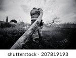fireman extinguishing a fire | Shutterstock . vector #207819193