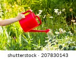 Child Hand Watering A Plant...