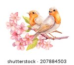 Birds On Blooming Branch With...