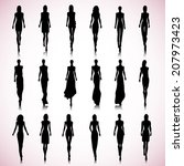 set of female fashion... | Shutterstock . vector #207973423