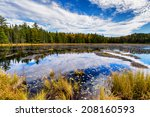 a view of a pond in a forest...
