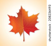 autumn maple leaf on colorful... | Shutterstock .eps vector #208236493