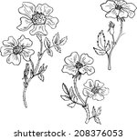vintage vector floral set of... | Shutterstock .eps vector #208376053
