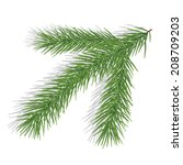 pine branch isolated on white.... | Shutterstock .eps vector #208709203