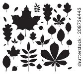 Vector Set Of Different Autumn...