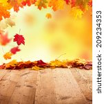 moody autumn background with... | Shutterstock . vector #209234353