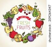 fruits vector frame. circle... | Shutterstock .eps vector #209264347