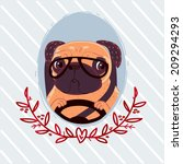 pug driving | Shutterstock . vector #209294293
