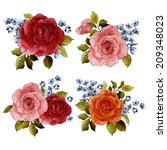 set of bouquets of roses ... | Shutterstock . vector #209348023