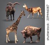 set of animals is in... | Shutterstock .eps vector #209446087