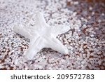 christmas and new year... | Shutterstock . vector #209572783