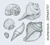 vector set with hand drawn sea...   Shutterstock .eps vector #209664757
