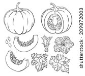 Vector Botanical Set With...