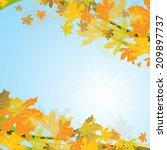 maple autumn background  vector ... | Shutterstock .eps vector #209897737