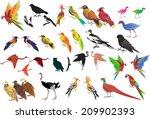 Vector Birds Set