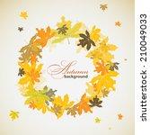 maple autumn background  vector ... | Shutterstock .eps vector #210049033
