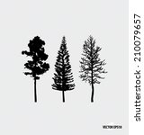 set of tree silhouettes. vector ... | Shutterstock .eps vector #210079657