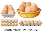 illustration of eggs in...   Shutterstock .eps vector #210223357