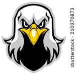 eagle head mascot   Shutterstock .eps vector #210370873