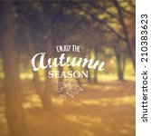vector retro autumn banner... | Shutterstock .eps vector #210383623