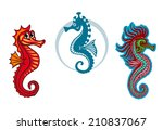 funny underwater seahorse or... | Shutterstock .eps vector #210837067