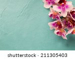 orchids bloom. white with pink... | Shutterstock . vector #211305403
