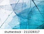 Vivid Color Leaf Texture