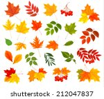 set of colorful autumn leaves.... | Shutterstock .eps vector #212047837