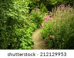 A Small Garden Path Amidst Lus...