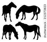Silhouettes Of Horses Isolated...